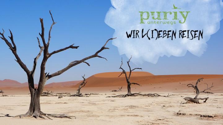 puriy-bild-bloggerkodex
