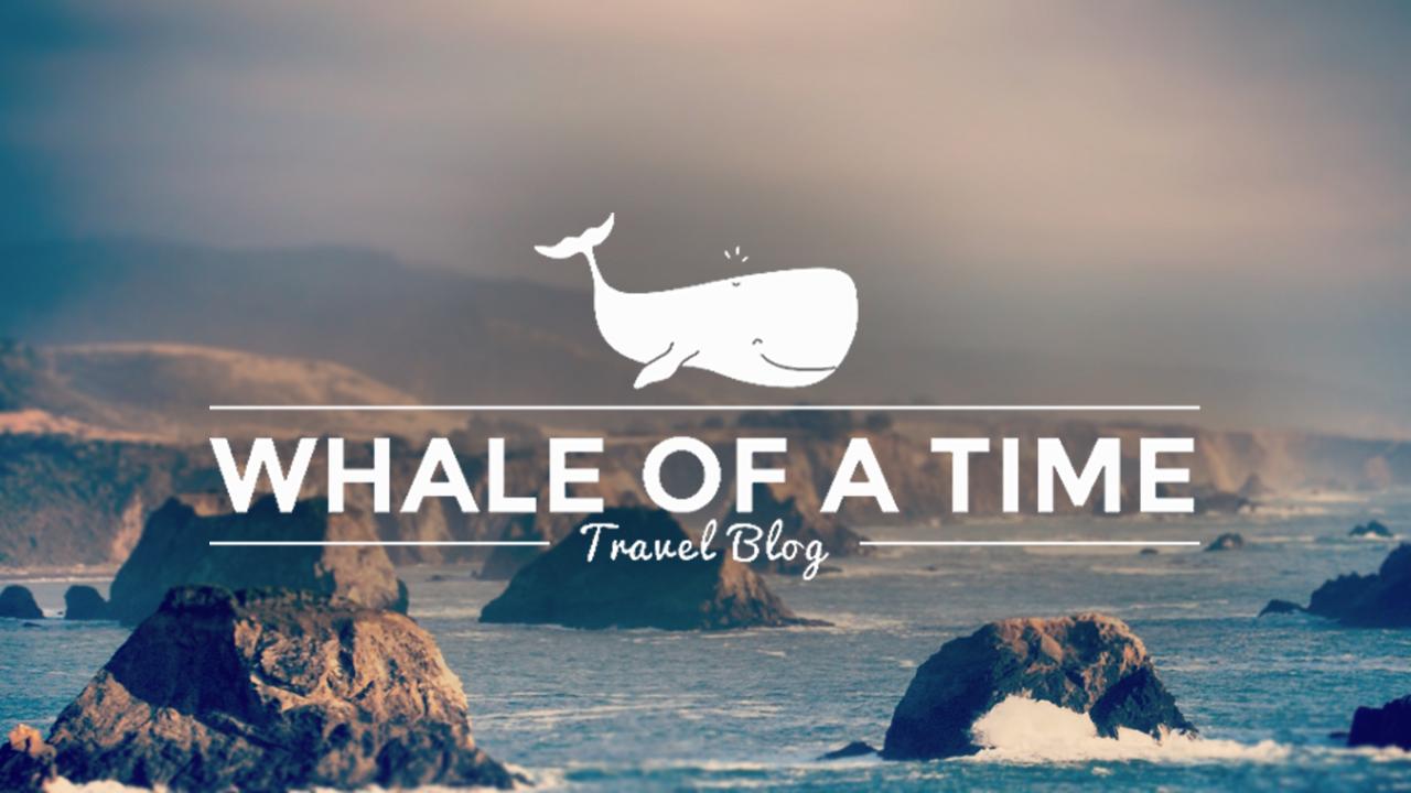 whaleofatime_logo