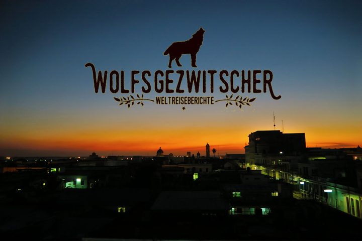 wolfsgezwitscher_banner
